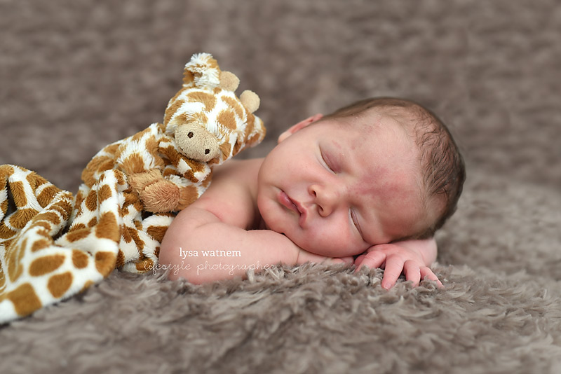 Posted in newborn babies newborns tagged ottawa newborn baby photographer kanata baby photographerkanata newborn photographernewborn baby photos newborn